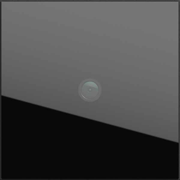 Gira System 106 Kameramodul - Erfassungswinkel 100° - Schwarzglas